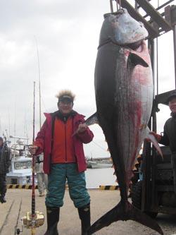 松方弘樹のクロマグロ(300kg超)、すしざんまいが184万8000円で落札
