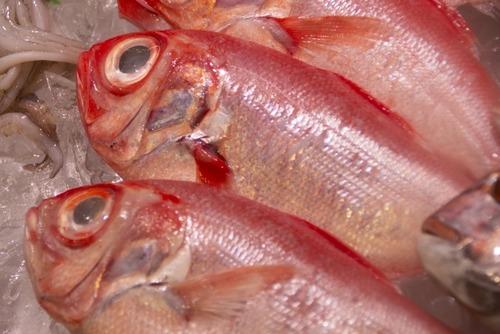 高級魚って値段のわりに美味くはないよな