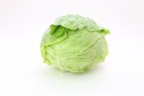 キャベツとかいう最強の野菜