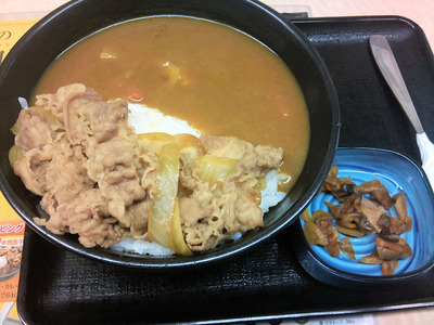 20110613_yosinoya_gdcurry