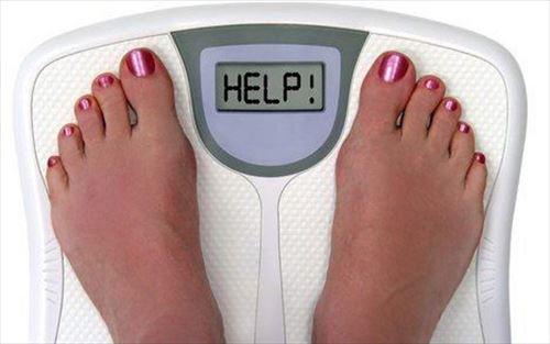 1日800kcalしか食ってないのに痩せなくてワロタwwwwwwwwwwwww