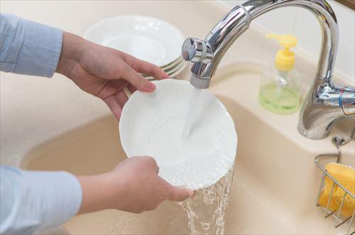 洗いもんする前に皿ティッシュで拭いてるっていったら