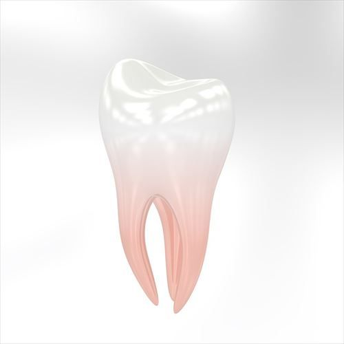 teeth-3433751_960_720_R