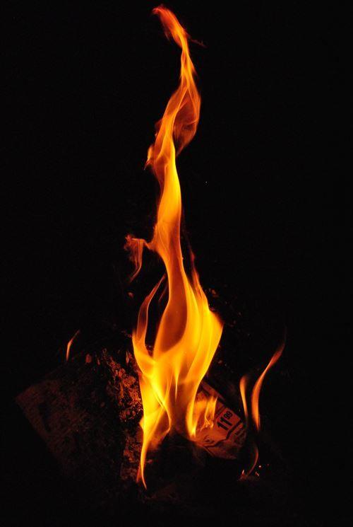 彡(x)(x)「天ぷらの油から火が上がってるやんけ!!」