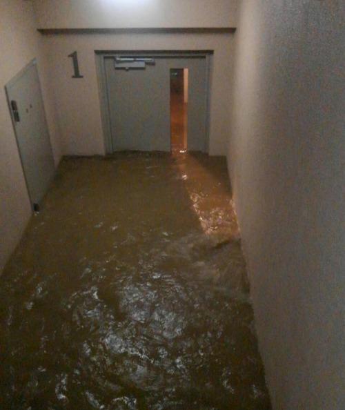 【悲報】武蔵小杉タワマン民、トイレしたかしてないかを巡って住民同士の対立が始まる