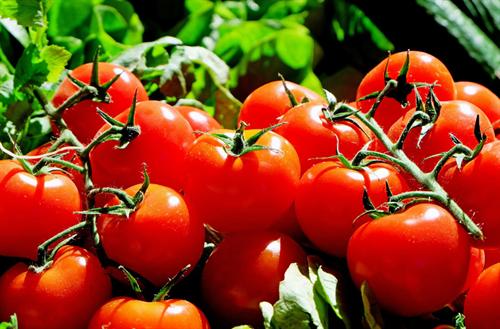 人体に害を及ぼす恐れのある5つの人気食品 トマト、じゃがいも、ナッツ、とうもろこし、赤豆