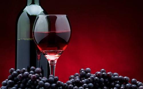 無職ニートワイ、毎日ワインを1.4リットル飲む