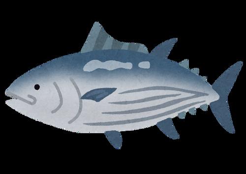 日本人の魚離れがよく言われるけどお前らも魚食わないの?
