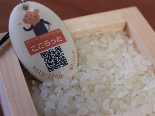 主食って米である必要あるか
