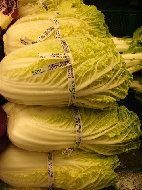 【悲報】白菜が高すぎる