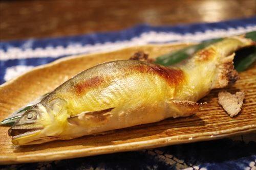 【悲報】川魚さん、見た目は芸術的なほど美しいのに味はまったく美味しくない