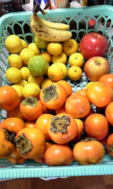 柿が大量にあるから今から柿ケーキ作っちゃうよー!!