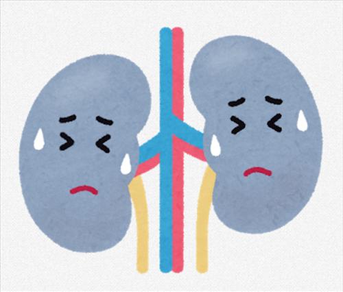 【注意喚起】「腎臓」のダメージは二度と回復しない 塩分は控えめにな