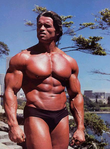 この人の筋肉って本当にナチュラルに鍛えたものなの?
