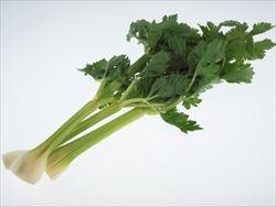 クセがあるが慣れると病み付きになる野菜「セロリ」の料理