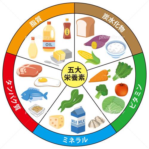 栄養素の中で一番大切なものってなんや?
