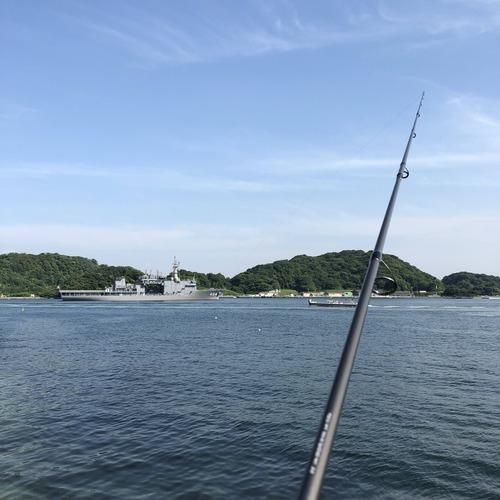 魚釣りしてきた