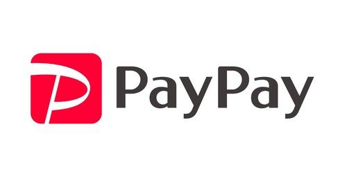 PayPay、QR決済で1920万人の圧倒的シェアを獲得。スーパーアプリで生活の全てを掌握へ!