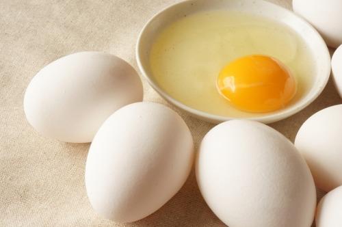 アメリカの大学「卵食べると脳梗塞や心筋梗塞のリスク増すから一切食うな」