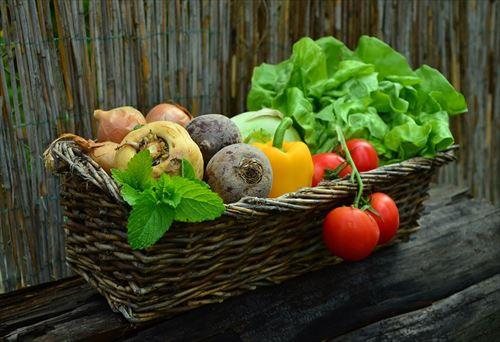 菜食主義だけど質問ある?