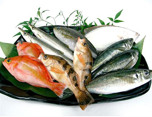 煮ても焼いても炊いても生でも美味い最強の魚は?