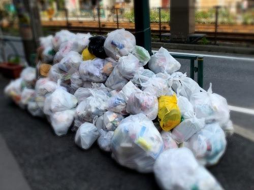 日本ってやたらゴミ出しの分別が細かいけど ちゃんとやらないとトラブル生じたりする?