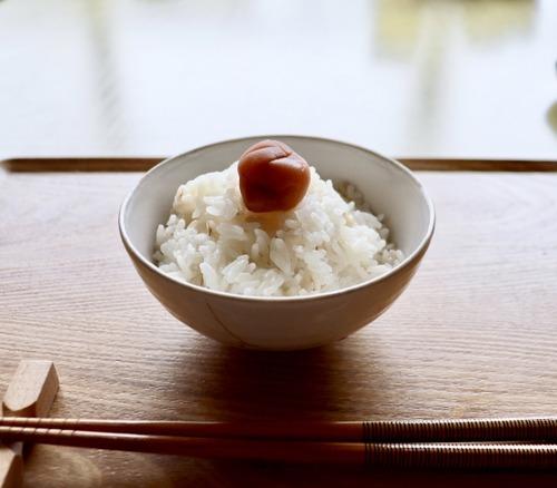 なんか炊きたてホカホカのメシよりも、常温で冷えた米のほうが美味いよな