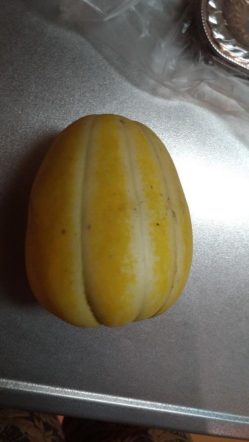 【急募】この謎の果物の食い方教えろ