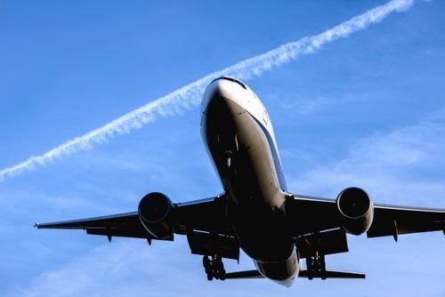 全日空と日本航空のスッチーが農家に派遣されるらしい