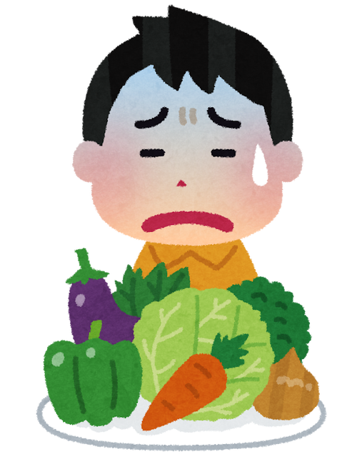 1日に必要な野菜とか言う多すぎる存在