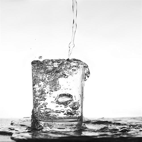ワイ干物、水分の摂取量が常人より多い模様
