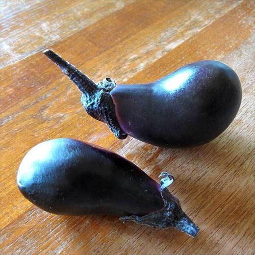 ナスとかいうぐう有能な野菜