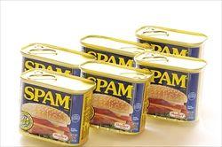 SPAMとかいう謎多き肉の缶詰wwwwwwwwwwwwwwwwww