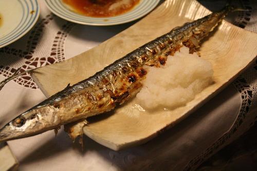 サンマが超記録的不漁 とある鮮魚店ではサンマ1匹5000円も