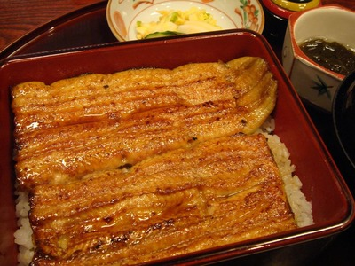 nodaiwa_matsujyu