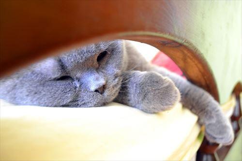 仕事中眠い→コーヒーやカフェイン錠で眠気を覚ます→夜眠れない→仕事中眠い の負のスパイラル