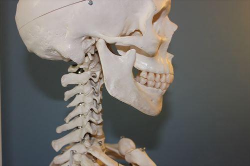 skull-778075_1280_R