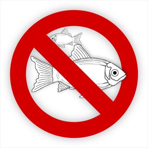 fish-995050_960_720_R