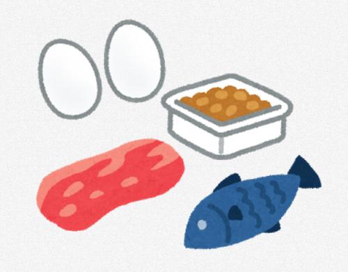 タンパク質摂取でコスパ最高の食材はなに?
