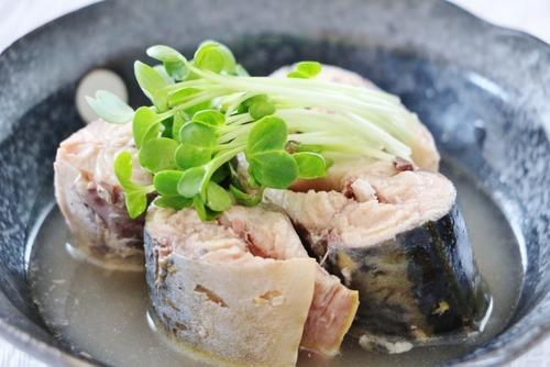 【悲報】サバの缶詰、そうめんに入れて食べるしか使い道がない