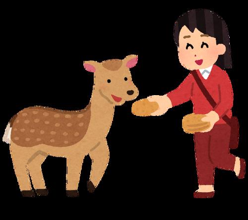 【悲報】奈良公園の鹿せんべいが150円から200円に値上げ