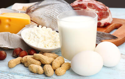 1-more-protein-more-muscle