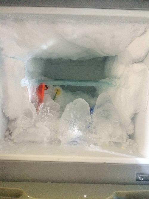 2週間ぶりに冷凍庫開けたらとんでもないことになってたんだが