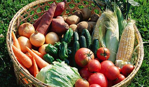 ベジタリアンの84%がまた肉を口にするようになっていることが判明 大豆には限界があるのか