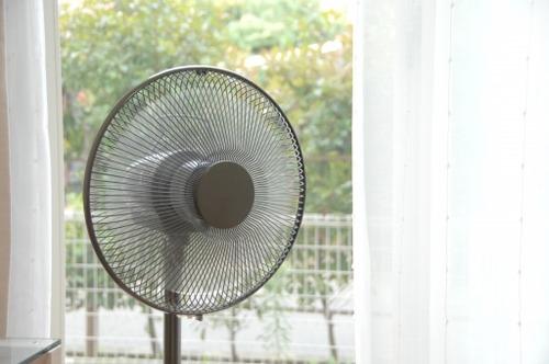 医師が警告!「扇風機あたり続けると死ぬ。」
