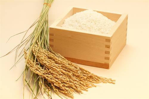 米って高いの食っても大して変わらないな