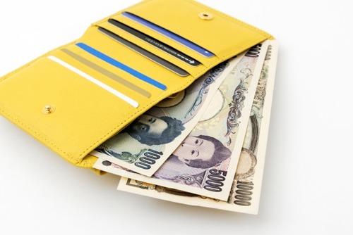 【長財布涙目】ミニ財布が人気 長財布よりカード、現金入れないのでムダ使いなし