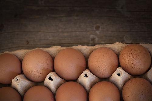 賞味期限一ヶ月過ぎてる卵食ったら完全に当たった