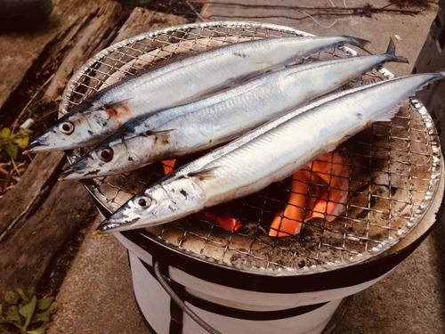 【悲報】漁師「サンマ197匹しか獲れなかった」→1匹6000円に