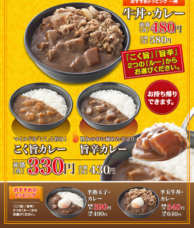 curry_ph001 (1)